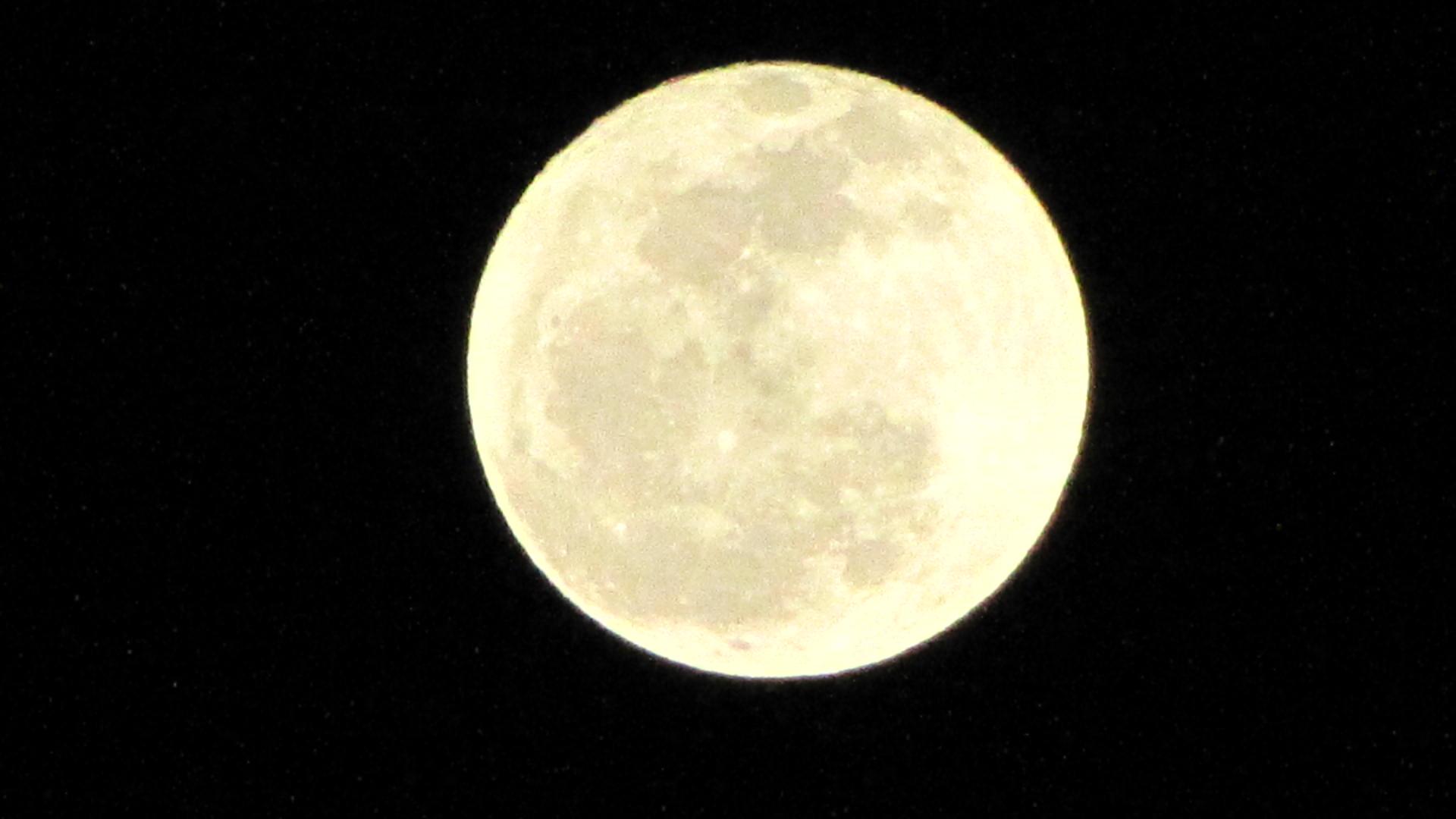 lluna plena